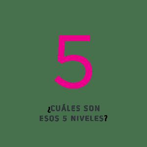 ¿Cuáles son esos 5 niveles?